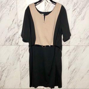 EUC Dressbarn Belted Colorblock Dress SZ 24W